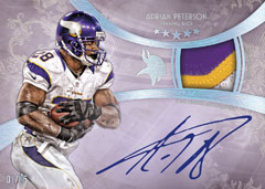 13fsfb_9003_signatures_patch_peterson