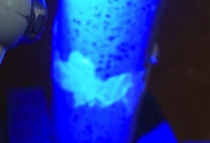 The repair to a ceramic is easily seen under black light