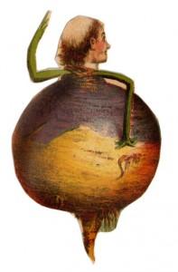 Turnip man
